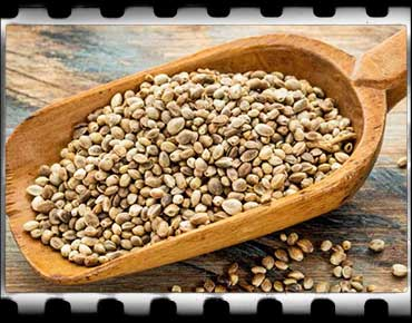 hemp-seed-nutrition-facts-1-1200×581